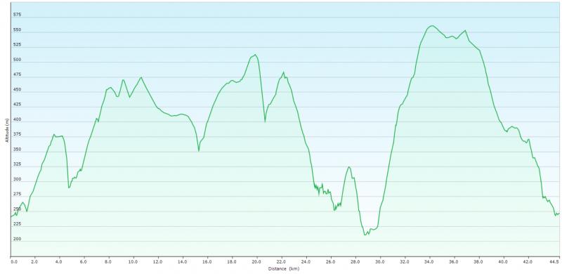 Profil 45km.PNG