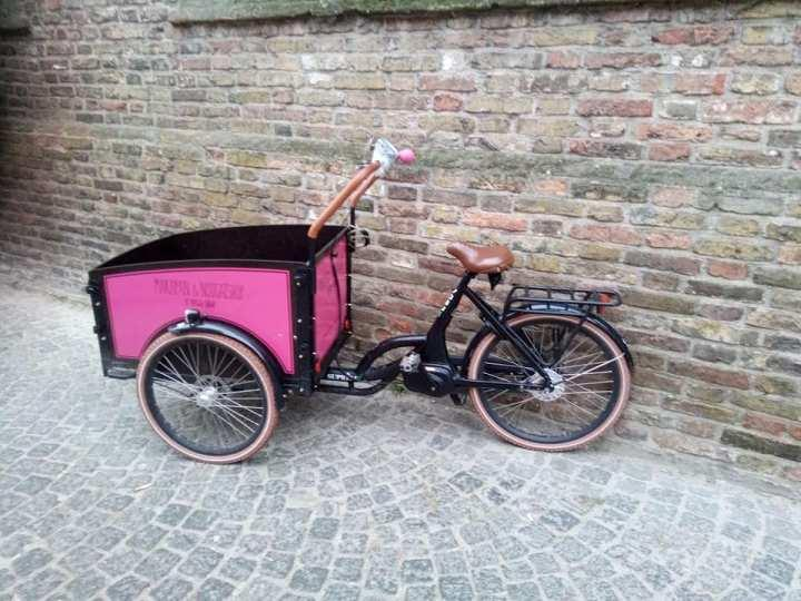 Tricycle rose Bruges 31-12-19.jpg