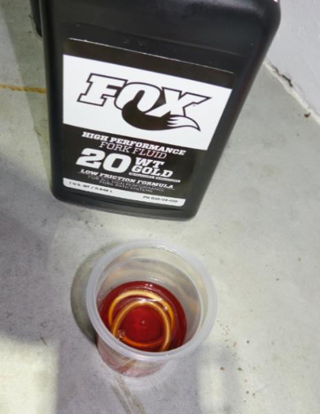 fox 13.png