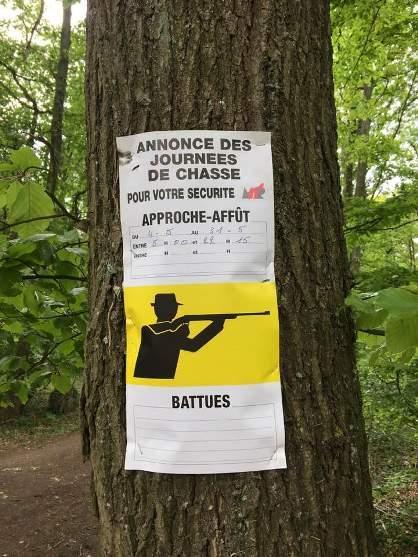 Affiche de chasse dans les bois de Amay mai 2020.jpg